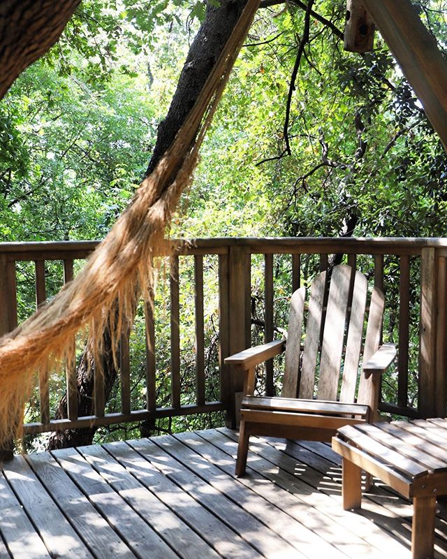 Terrace of treehouse Shere Khan