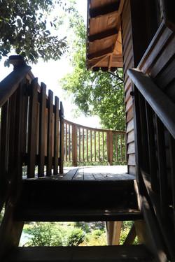 Stairscase Bagheera