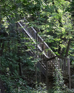 Stairway to your treehouse experienc