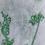 Thumbnail: Fleurs des champs 1 monotype