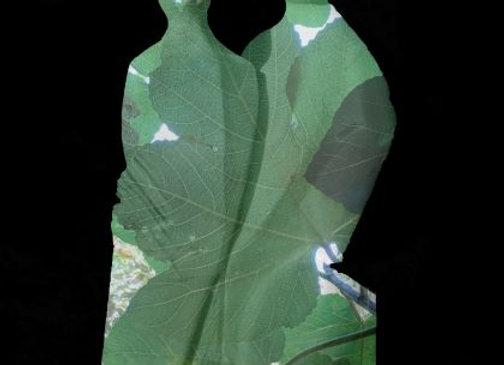 Photosculpt A l'ombre du figuier