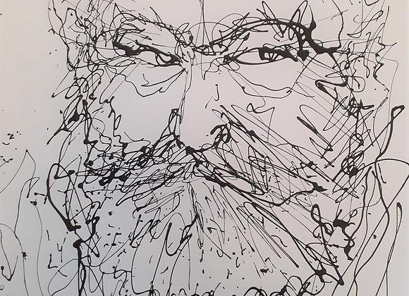 Portrait de Victor Hugo 6