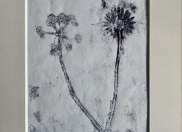 Fleurs des champs 3 monotype