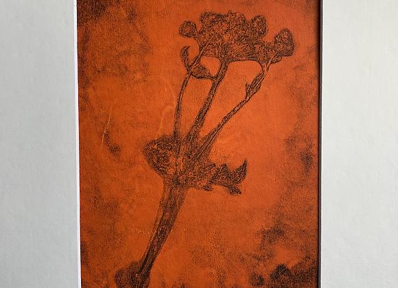 Fleurs des champs 2 monotype