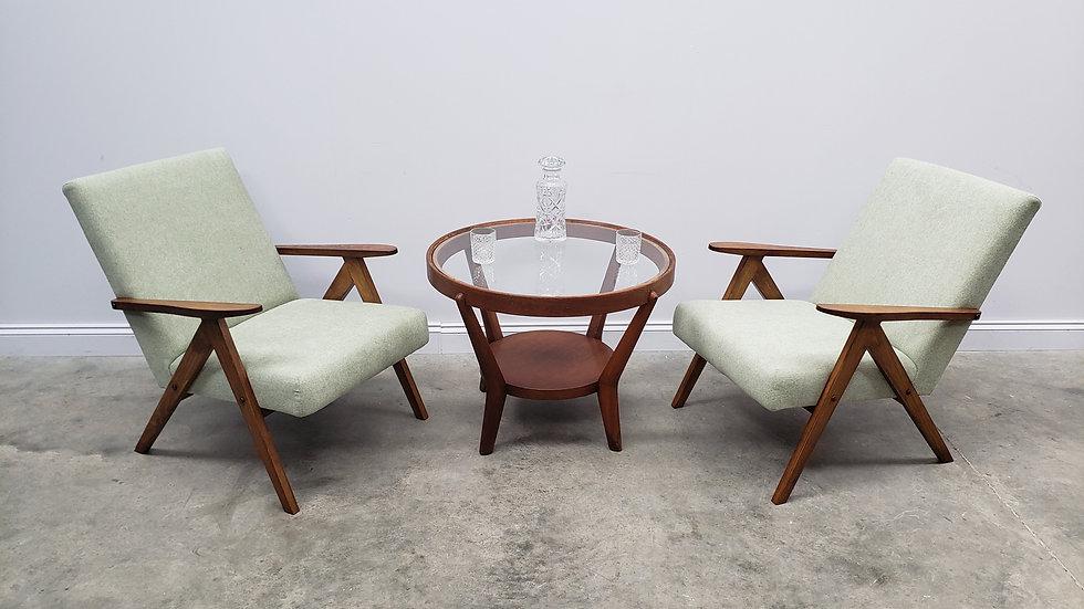 Mid Century Easy Chairs Model B - 310 Var in Light Green
