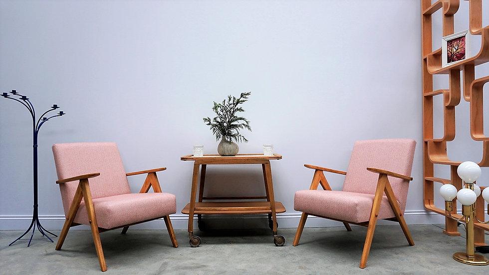Model B 310 Var Mid Century Easy Chairs in Light Pink Tweed, 1960, Set of 2