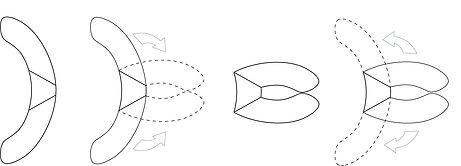 flexrotationdiagram.jpg