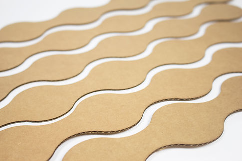 cardboardprototype2.jpg