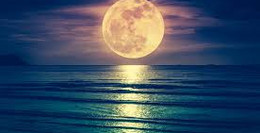It's Full Moon! Now what?