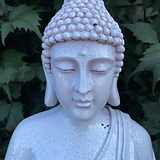 Buddha.heic