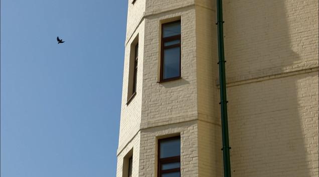 Окна бывшей квартиры Шаховских на Зубовском