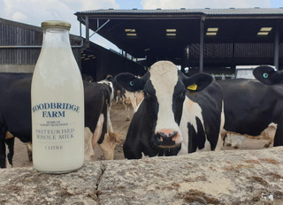 Fresh Milk from Woodbridge Farm