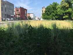 Inner city vacant lots