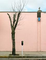 3-Wildwood-Streetscape.jpg