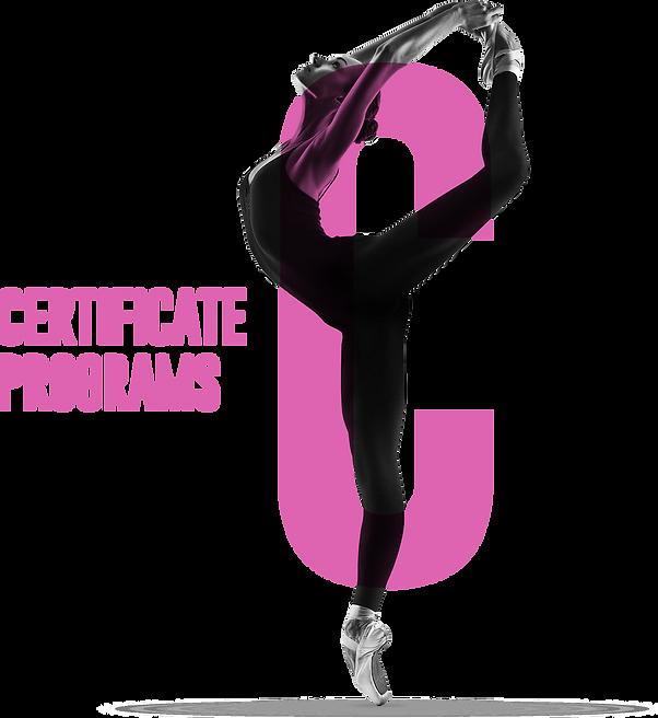 CerticatePrograms2.png