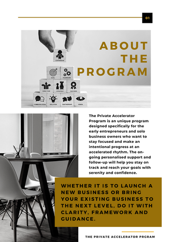 THE PRIVATE ACCELERATOR PROGRAM.png