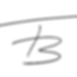 Logo Ferdinand Bader.png