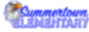 SES Horizontal Primary_S-town Blue.png