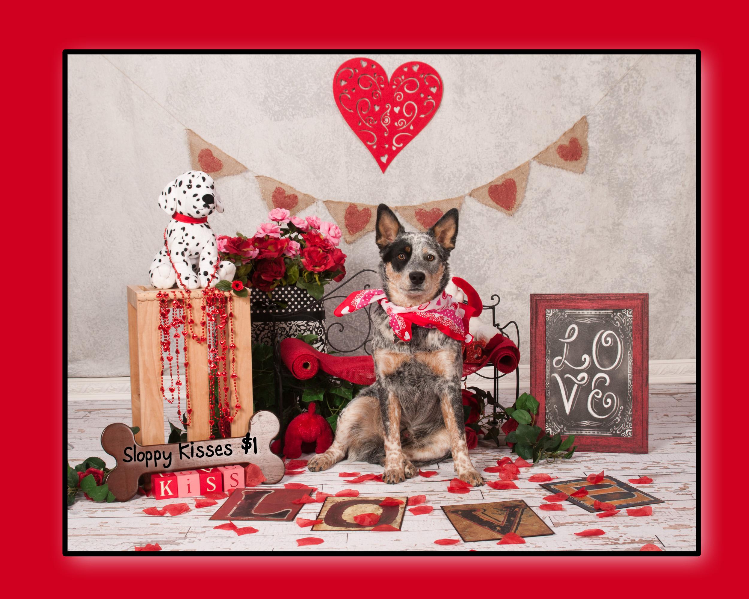Gunner Valentines