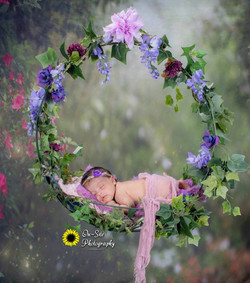 newborn baby pose fairy swing, baby girl
