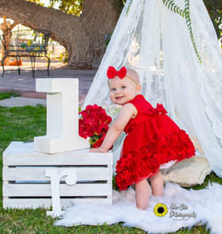 cutest first birthday photoshoot little