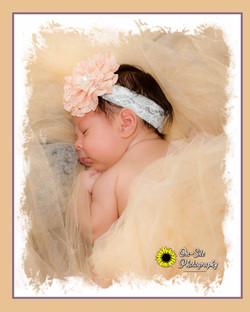 newborn baby girl  poses, newborn pictur