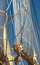 Brasker schooner