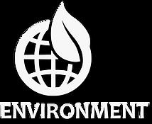 1 environment.png