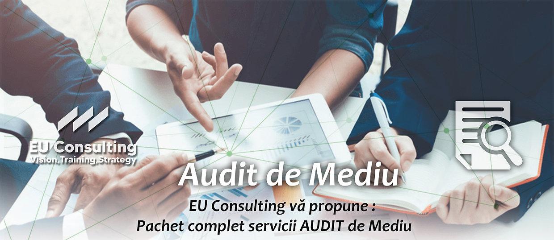 MEDIU audit de mediu.jpg