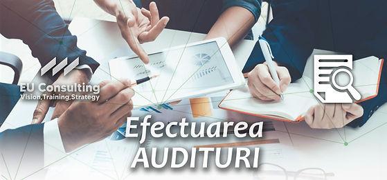 AUDIT efectuare audituri (1).jpg