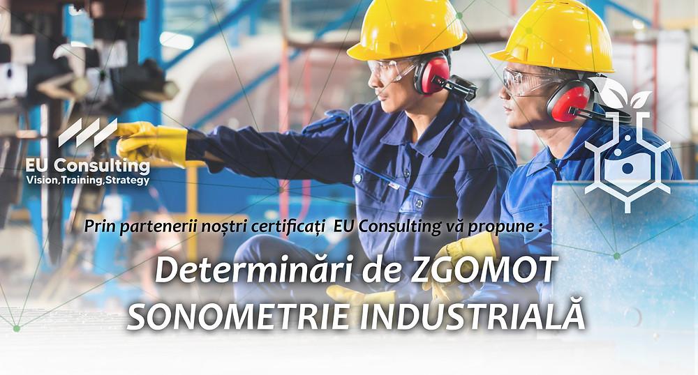 Sonometria Industriala