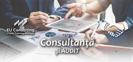 consultanta audit.jpg