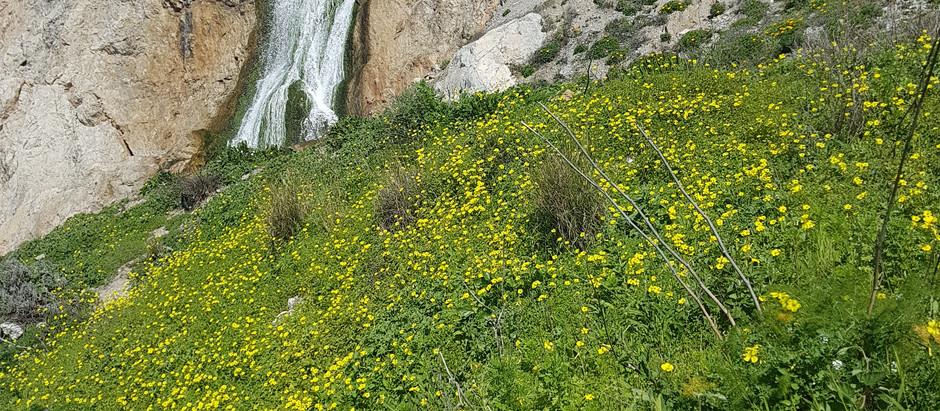 Relax in Gibraltar