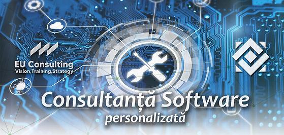 CONSULTANTA consultanta software.jpg