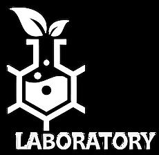 2 laboratory.png