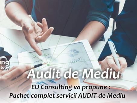 Audit de Mediu