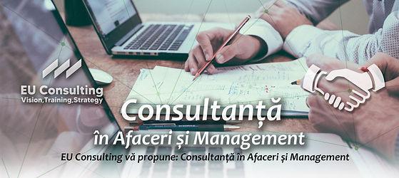consultanta afaceri si management.jpg