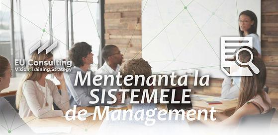 AUDIT mentenanta sisteme management (1).