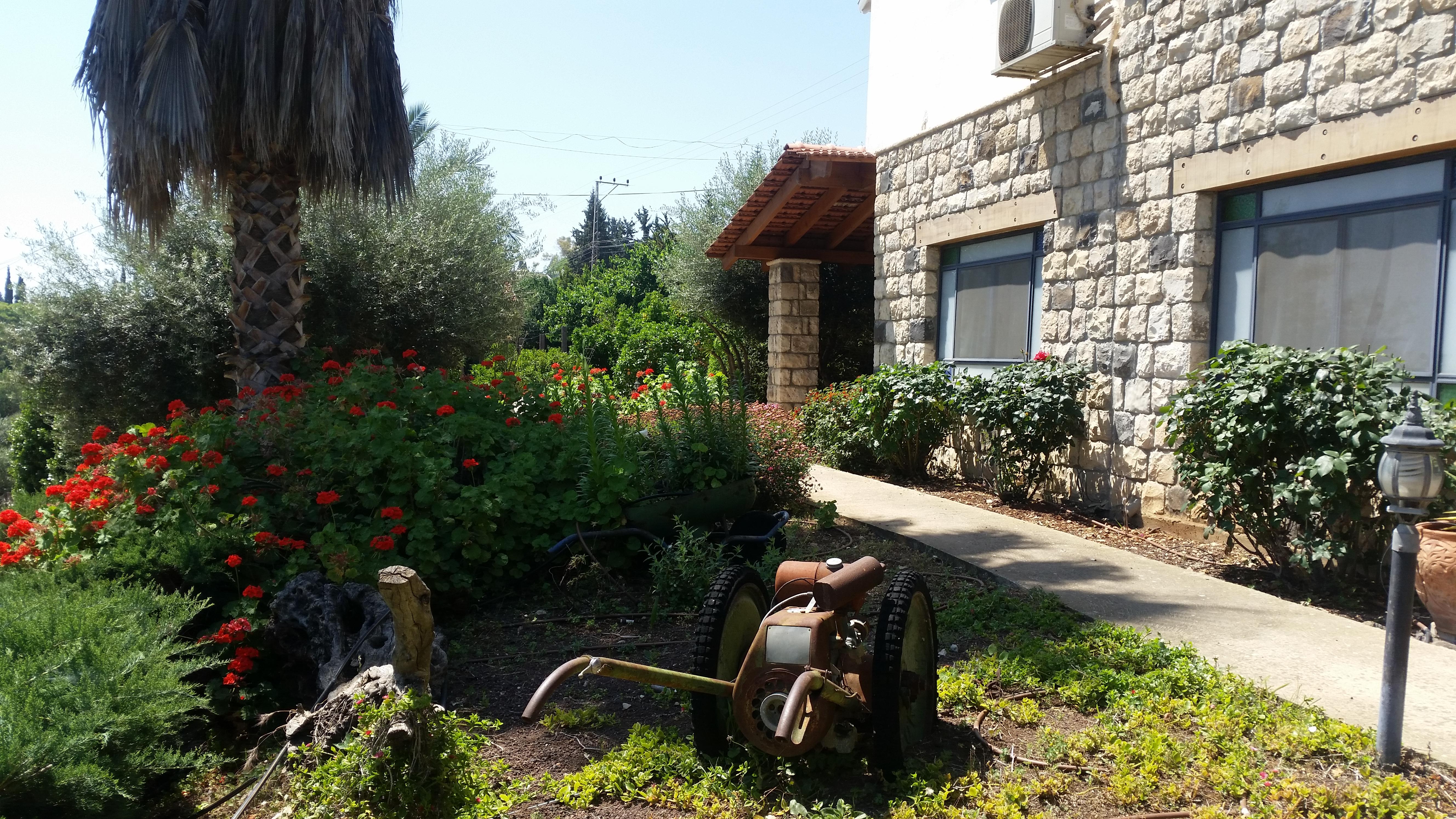 הגינה שלנו