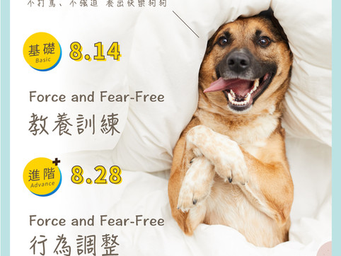 2021/8月線上講座-Force & Fear-Free