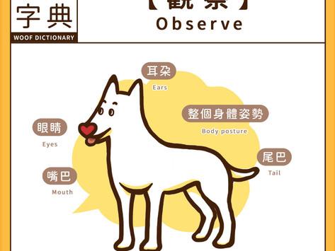 狗語字典 -[ 觀察 ]