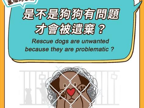 是不是狗狗有問題才會被遺棄?