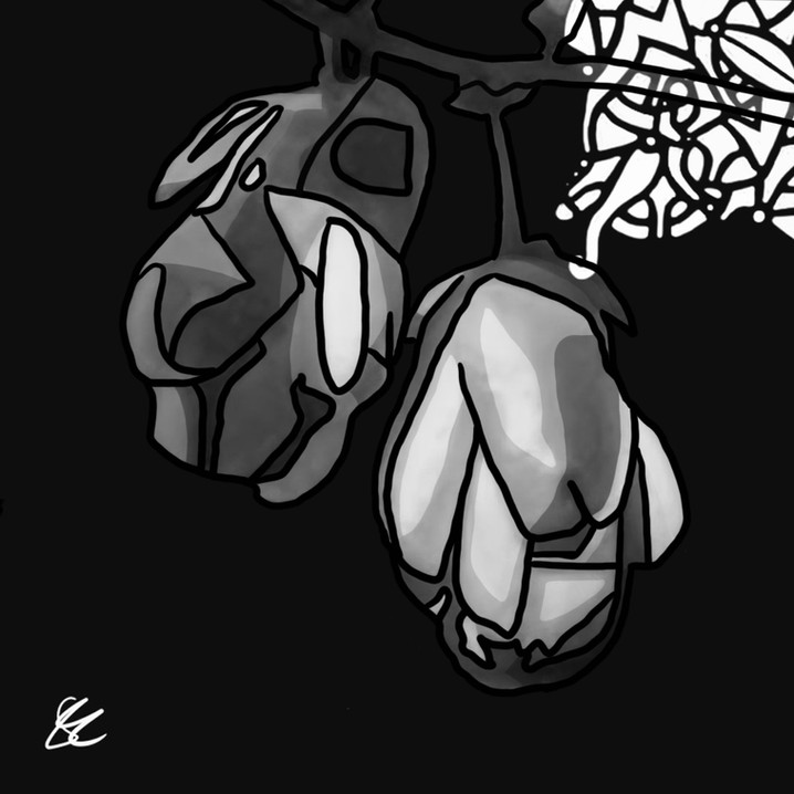 DMWJ_DeracineMoi_Flowers01_V2.jpg