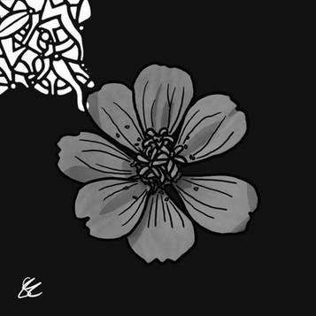 DMWJ_DeracineMoi_Flowers03_V2.jpg