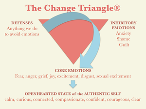 The Change Triangle from Hilary Jacobs Hendel