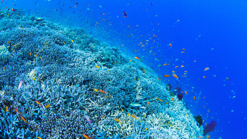 Beautiful_Islands_040.jpg