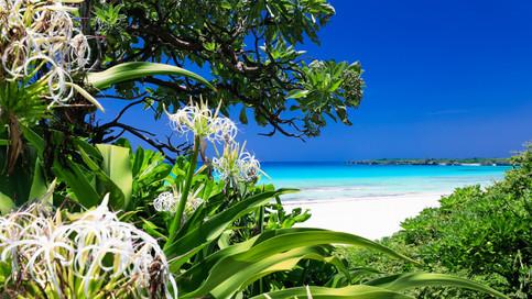 Beautiful_Islands_029.jpg
