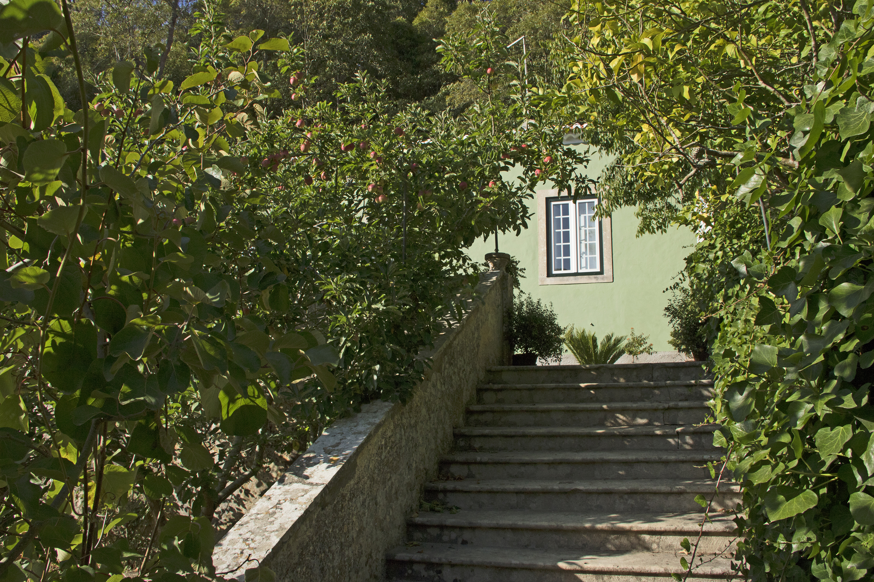rooms near sintra