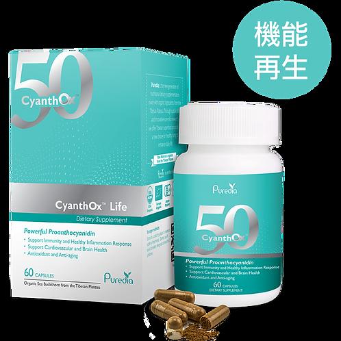 原花青素 CyanthOx™ 50 (60pcs)