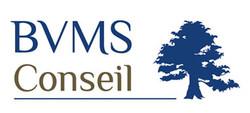Etude 1 logo BVM Conseil